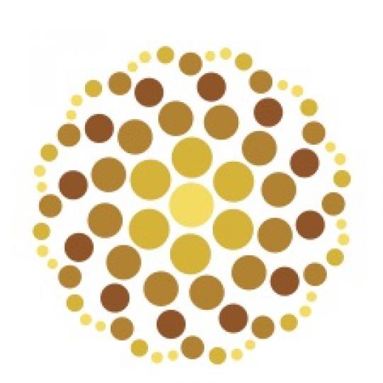 Bloomington Project School logo